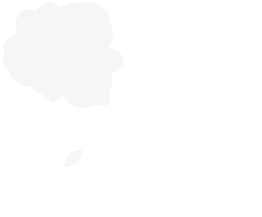 Adrina Ayuso